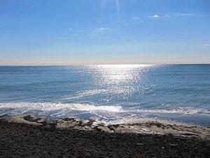 今日の稲村ケ崎の海は波がありません。