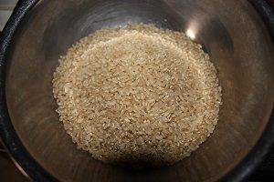 玄米をお水に数日間浸けておくと発芽するよ。