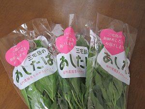 食物繊維が摂れる野菜、最近のお気に入りは明日葉