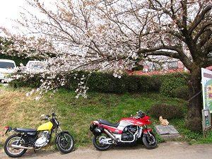 バイクでツーリングに良く行くよ