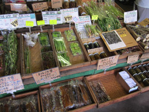 山物市場、6月はとうもろこしと山菜が中心