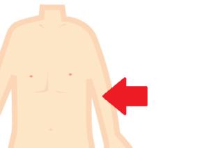 肱中は臂臑よりも腕の内側にあるよ