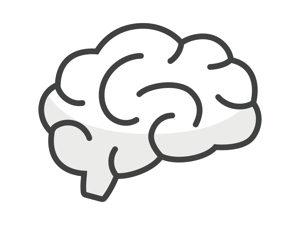 脳はケトン体を臨時のエネルギー源として使うよ