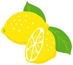 国産のレモン、チトお値段高いけどね・・・