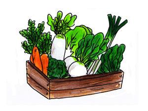 野菜から先に食べると血糖値は上がりにくくなるよ