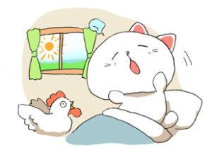 朝ごはんはカレーダイエット〜