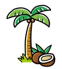 ココナッツオイルダイエットは難しいね。