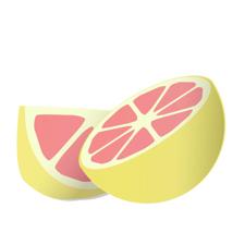 カットしたグレープフルーツ、保存には気をつけてね