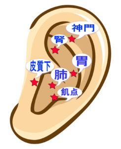 耳にはつぼがたくさんあるよ!